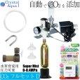 画像1: CO2フルセット Dタイプ 自動CO2添加(スピコン+電磁弁一体型CO2レギュレーター、タイマー他) (1)