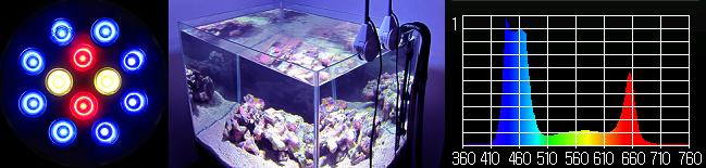 水槽用照明・LEDスポットライト 【クリスタルエリート20】コーラルバイオレット マルチスペクトル┃鮮やかなレッドブルー┃カラーイメージ