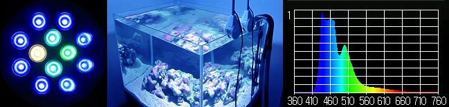 水槽用照明・LEDスポットライト 【クリスタルエリート20】マリンブルー マルチスペクトル┃濃いブルー┃カラーイメージ